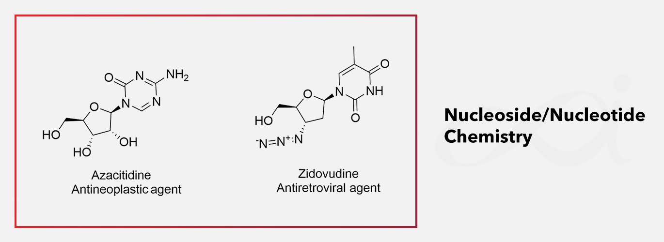 Expertise of the month: Nucleoside/Nucleotide Chemistry