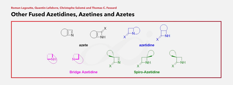 SpiroChem featured in Comprehensive Heterocyclic Chemistry IV
